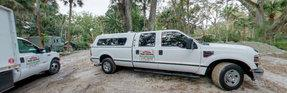 A Affordable Tree Service